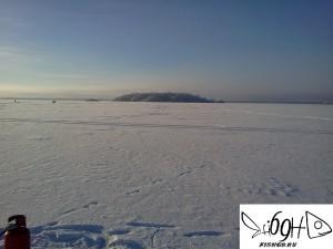 Остров Дергуны Вышневолоцкое водохранилище