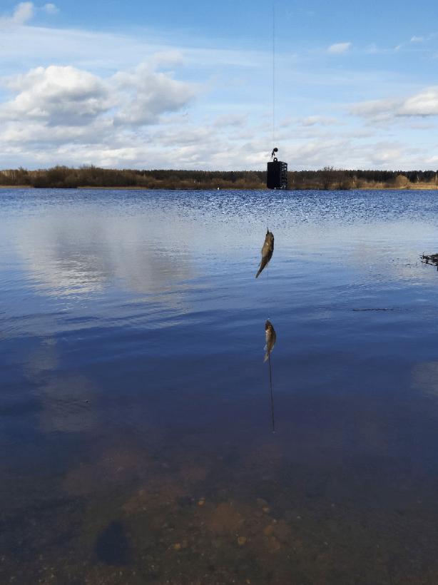 Рыбалка в Твери на Волге