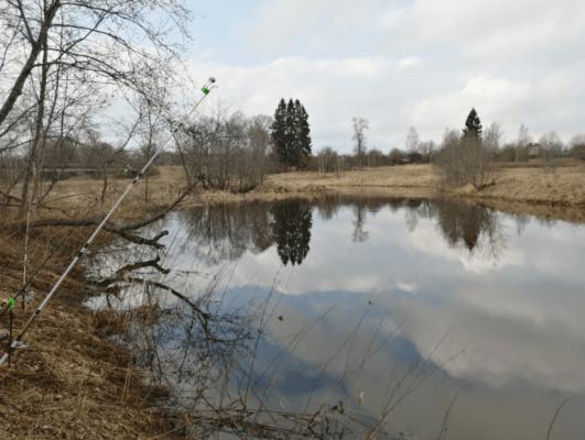 Отчет река Тверца - сильно разлилась