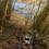 Река Мста рыбалка отчет